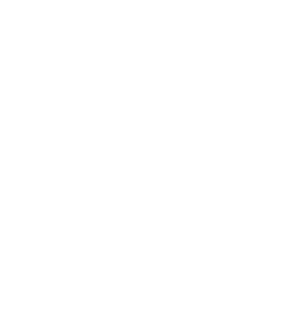 PETERSBURGER SALON 2016 Artwalk